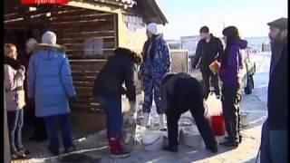 Собачий АД под видом приюта для бездомных животных (видео)