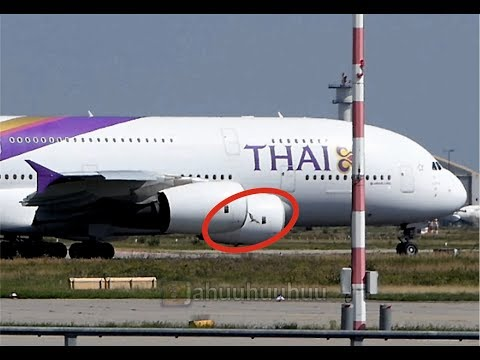 Bird strike - Thai Airways A380 Frankfurt Airport (FRA/EDDF)