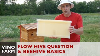 Flow Hive Reality - Where are the Flow Frames? (+ Beekeeping 101)