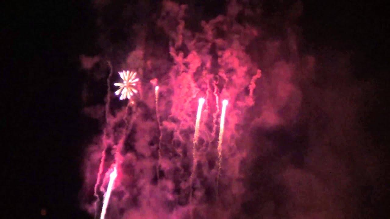 Summer Nights Fireworks Busch Gardens Tampa