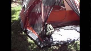 Coleman Tent: Evanston 4 Person