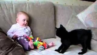 Cute baby and cute black kitten
