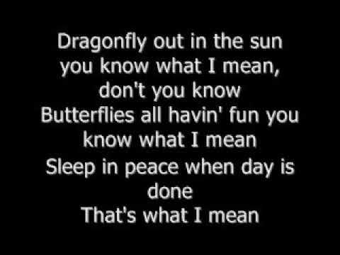 Nina Simone - Felling Good(Lyrics)