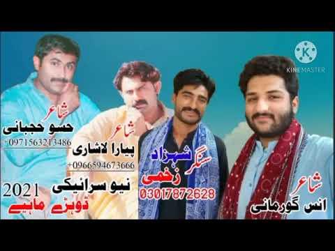 Download Arey Chalye Ni Dhorey 2021- Shahzad Zakhmi - Latest Saraiki Song - Anas Studio