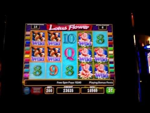 Lotus Flower Slot Machine Max Bet img-1