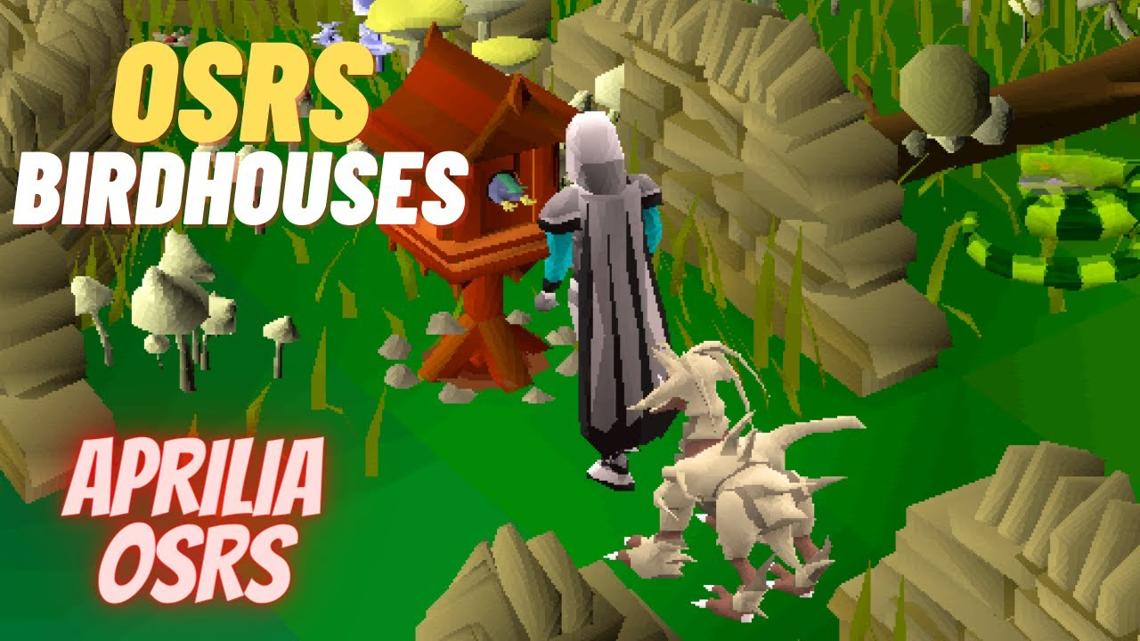 Fast Easy Bird House Trapping Guide Osrs Youtube Michel zseptember 12th, 2018 28902. fast easy bird house trapping guide osrs