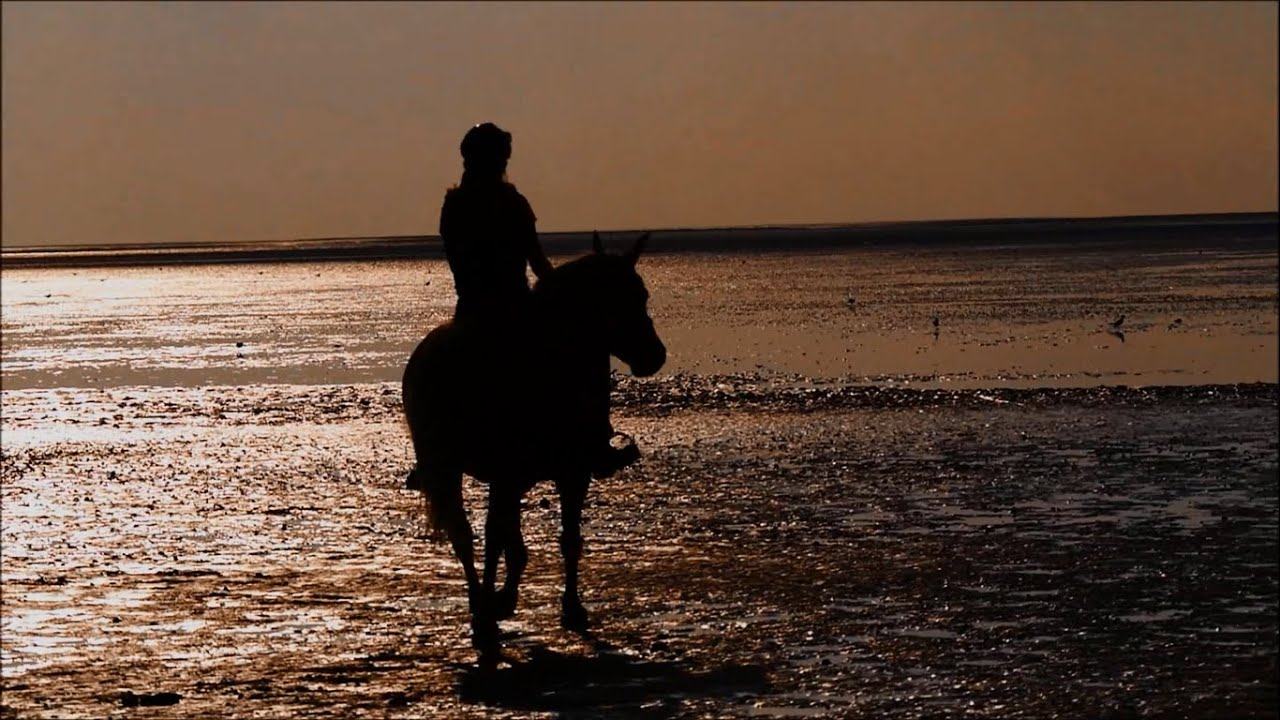 cuxhaven 2016 urlaub mit pferden youtube. Black Bedroom Furniture Sets. Home Design Ideas