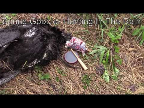 Spring Gobbler In The Rain - Justin's First Bird