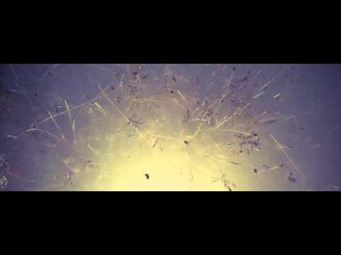Jardier - Sailor (Official Audio)