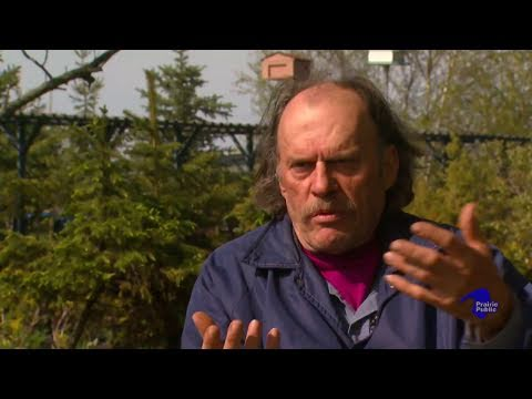 Lloyd Harding The Collaborative Art Of Bonsai Hitterdahl Mn Youtube