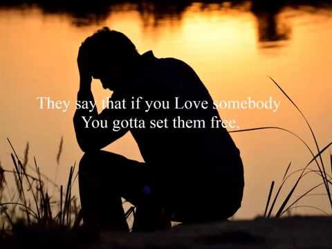 Straight Lines - Letting Go  w/ (Lyrics)