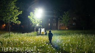 24/7 Surveillance Lighting: Who Is Watching—and Why? | The New Yorker Documentary