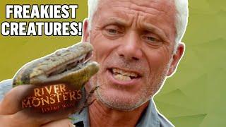 Freakiest Creatures - River Monsters