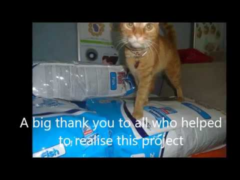 Greek Cat Care Foundation - 2017 goods arriving in Greece