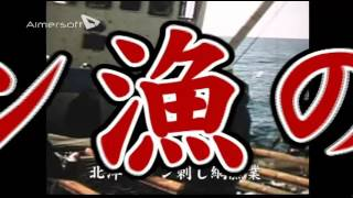 日本の遠洋漁業 坪内知佳 検索動画 13