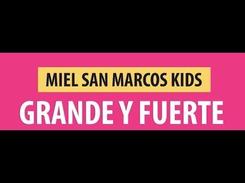 GRANDE Y FUERTE MSM KIDS