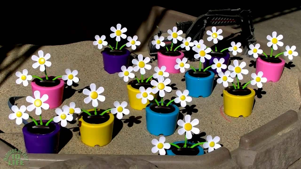 10 minutes of your life watching dancing triple daisy solar flowers 10 minutes of your life watching dancing triple daisy solar flowers izmirmasajfo