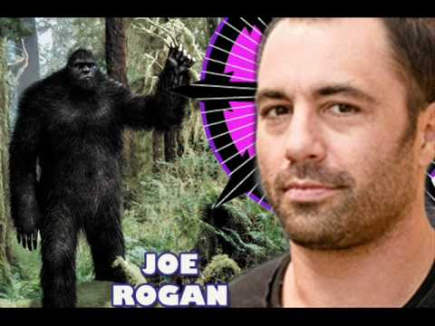 The Duncan Trussell Family Hour: Episode 9 JOE ROGAN, kill the vampire in your life