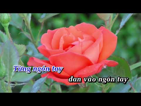 MƯỜI NGÓN TAY TÌNH YÊU - Thuỳ Linh