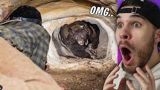 Der Tunnel war nicht groß genug für beide... HILFE!!