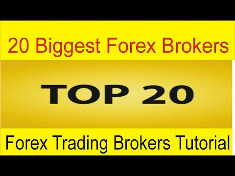 Top 20 Biggest Forex Brokers Of The World | Best Forex Tradi