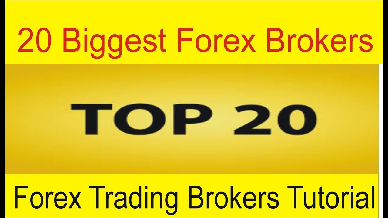 Largest forex brokers in the world