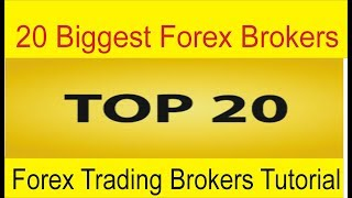 Top 20 Biggest Forex Brokers Of The World | Best Forex Trading Companies List by Tani Forex in Urdu