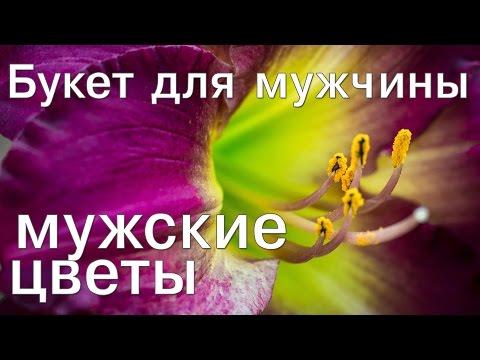 Мужские цветы - букет для мужчины  (buketberry ru)