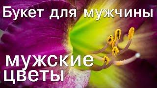 видео Цветы мужчин. Какие цветы можно подарить мужчине?