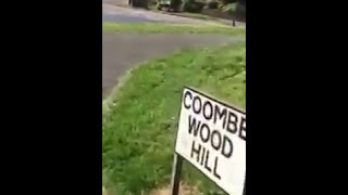 Coombe Wood Hill (Full Circle)