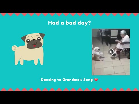 Dog dancing to Grandma's Song ❤