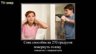 Фото приколы.смешные картинки.ржал до слез)))