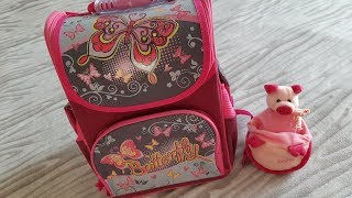 Школьный рюкзак Willy WL-853 Sweet butterflies