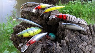 Кой Воблер за Каква Риба Воблери Ръчна Изработка за Сом Щука Распер Which Lure for Which Fish
