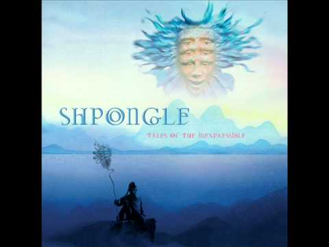 Shpongle - Around The World In A Tea Daze (Audio)