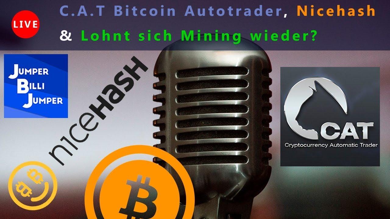 optionsbot 2.0 lohnt sich crypto trading