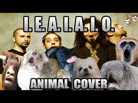 System of a down - I.E.A.I.A.I.O. (animal cover)