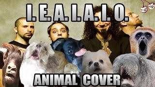 Baixar System of a down - I.E.A.I.A.I.O. (animal cover)