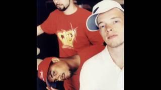 Nie nett rmx LIVE MTV best Version ever! Beginner, Das BO  feat. D-Flame