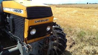 Ursus 1604 Pełna moc engine sound żniwa 2016