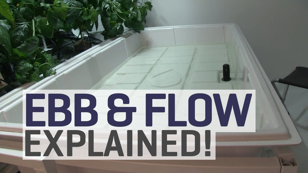 ebb and flow hydroponics explained youtube. Black Bedroom Furniture Sets. Home Design Ideas