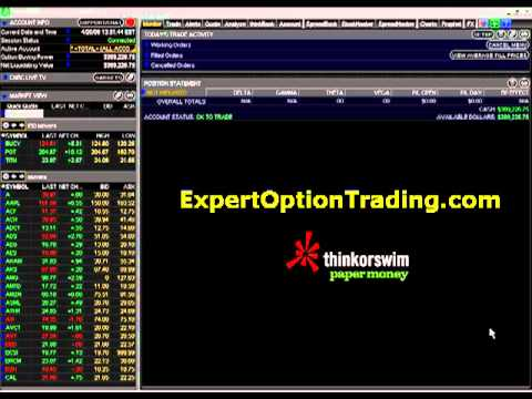 Citi option trading primer