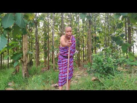 MAWAIDHA MASAI PARTY TWO