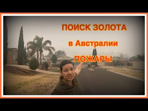 ЗОЛОТО ЗА 2 ЧАСА !!!  //  ПОЖАРЫ В АВСТРАЛИИ // 2020 // ВИКТОРИЯ
