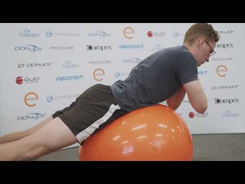 Exercise Balls for Lower Back Pain Sydney Physios
