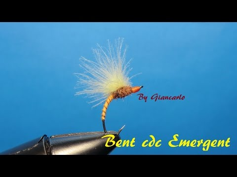 BENT CDC EMERGENT by Giancarlo