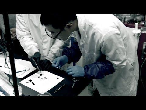 شرائح إلكترونية بسماكة الخلية الواحدة لإنتاج شاشات رقيقة جداً  - 16:53-2019 / 4 / 23