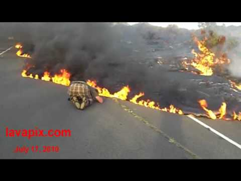 lava-burns-highway-130-july-17,-2010