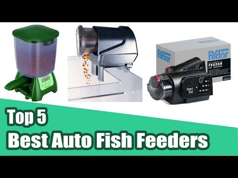 5 Best Automatic Fish Feeder - Fish Mate P7000 Auto Pond Fish Feeder 2020