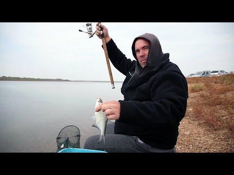 Платики на фидер - част 1 / Feeder fishing for bream - part 1